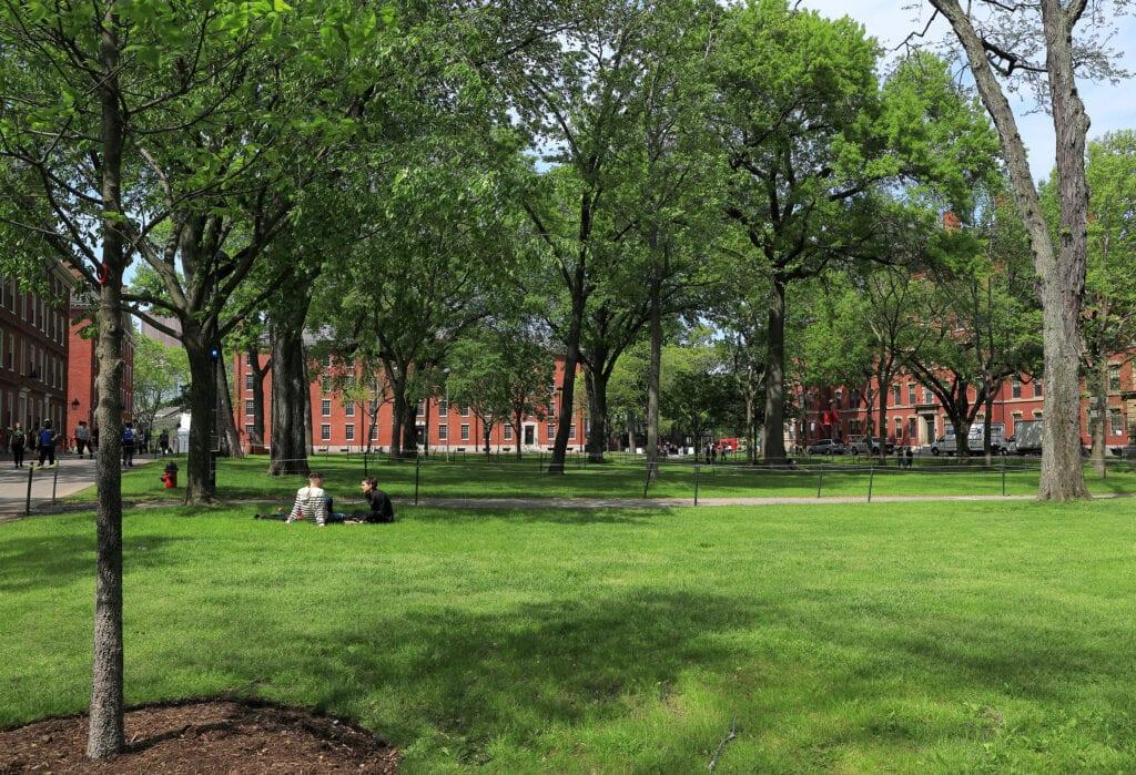 Students in Harvard Yard